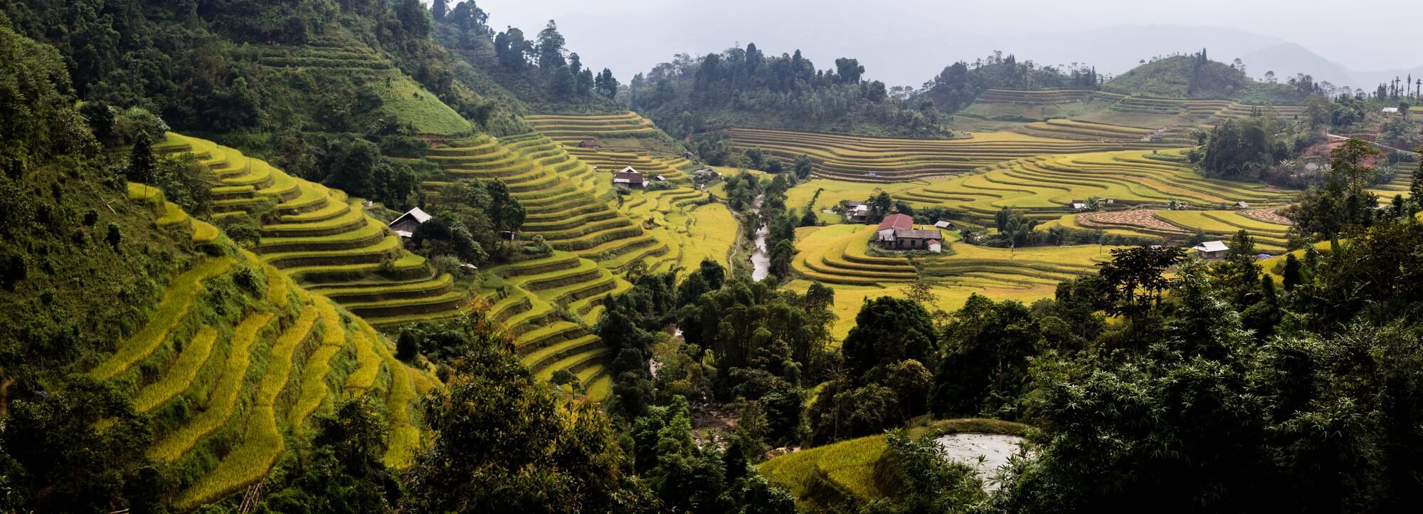 Hoang Su Phi panoramic landscape of houses in rice terraces