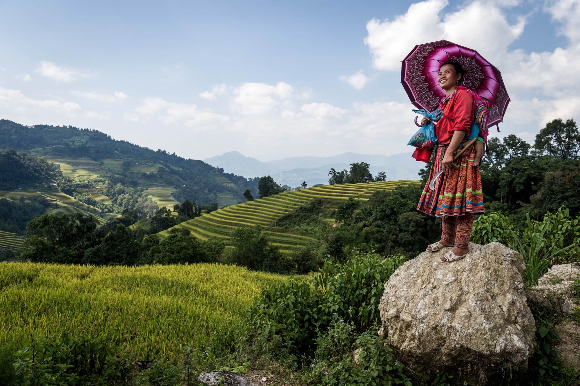 Vietnamese Minority with colorful umbrella and outfit on a rock over viewing the rice fields